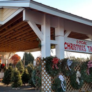 Village At Robinson Farm Farmers Market, Retail and Office Space Rea Road Charlotte NC