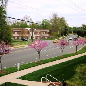 Village At Robinson Farm Retail and Office Space Leasing Charlotte NC
